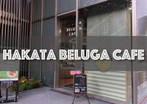 【BELUGA CAFE】博多駅から徒歩10分!花畑牧場の味も楽しめるベルーガカフェ!